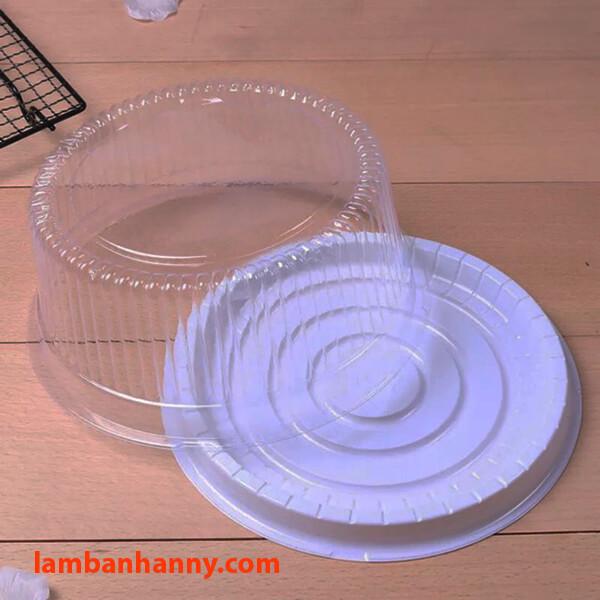 Hộp nhựa đế trắng nắp trong suốt A022