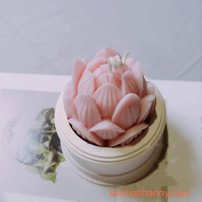 hoa sen búp 1