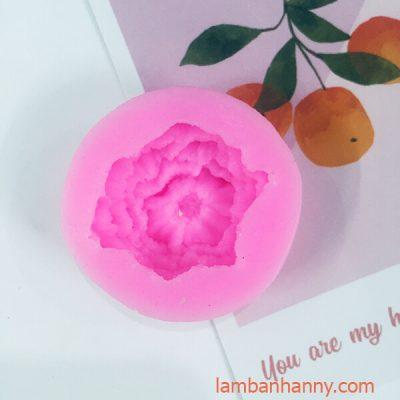 khuon silicon 4D hoa cam chuong 2
