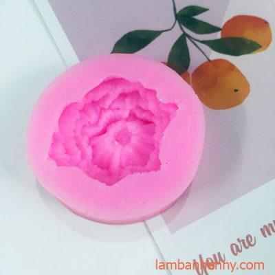 khuon silicon 4D hoa cam chuong 3