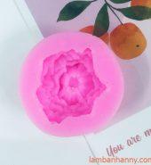 Khuôn silicon 4D hoa cẩm chướng