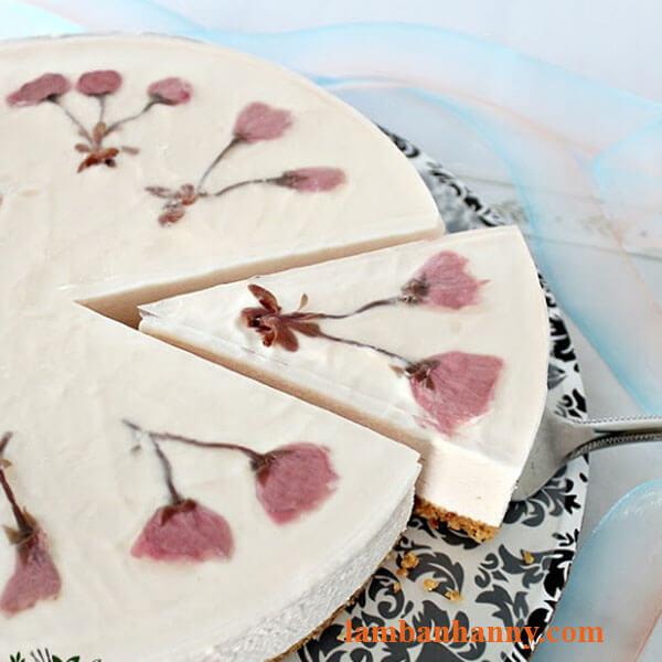 Bánh cheesecake hoa anh đào