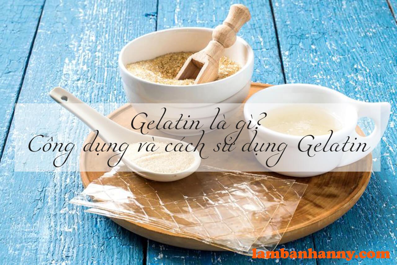 Gelatin là gì? Công dụng và cách sử dụng Gelatin sao cho đúng cách