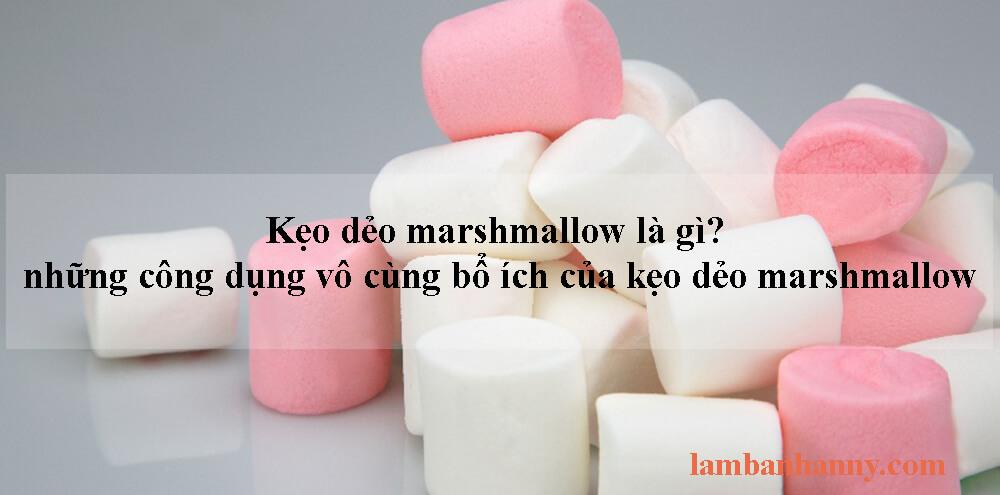 Kẹo dẻo marshmallow là gì? những công dụng vô cùng bổ ích của kẹo dẻo marshmallow