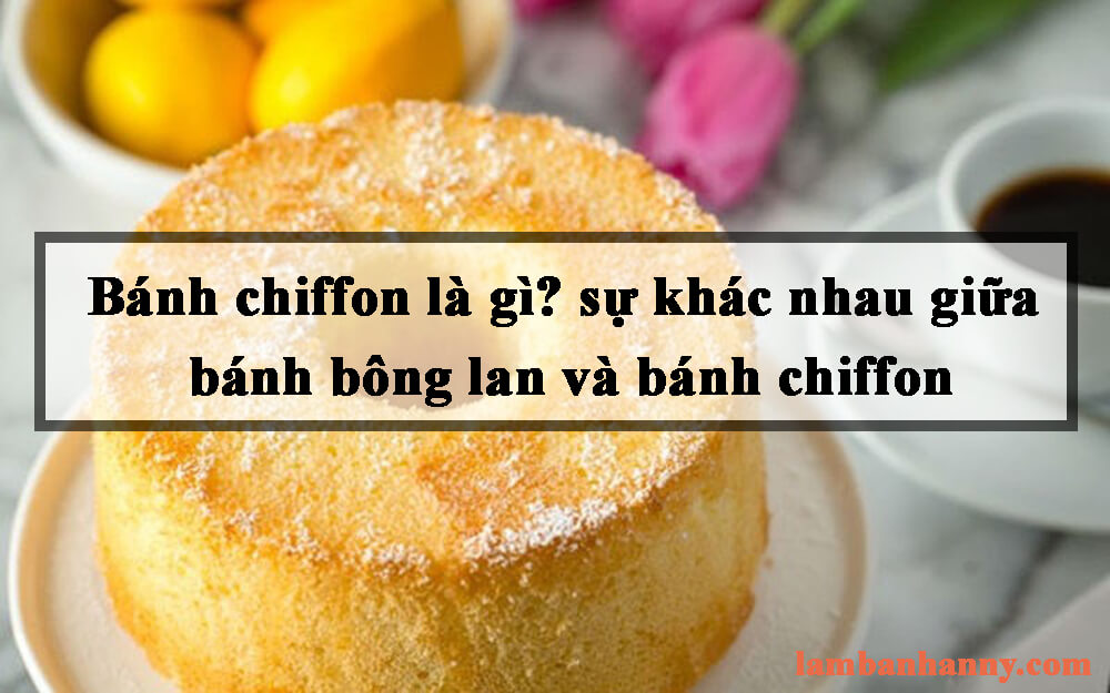 Bánh chiffon là gì? Đặc điểm cấu trúc và khác nhau giữa bánh bông lan và bánh chiffon