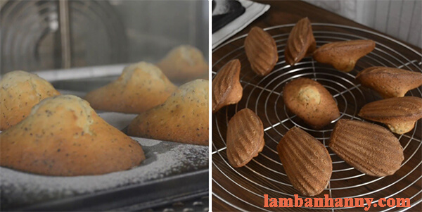 cach lam banh so madeleine 6